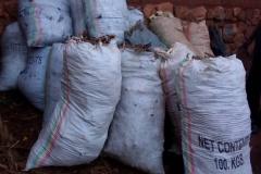Rohmaterialien zur Holzkohleherstellung