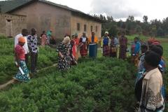 Besuch einer Witwengruppe in der Westlichen Provinz von Rwanda